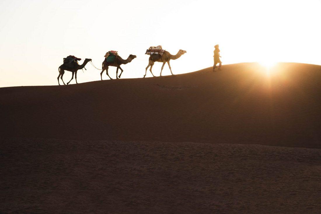 trekking in M'Hamid