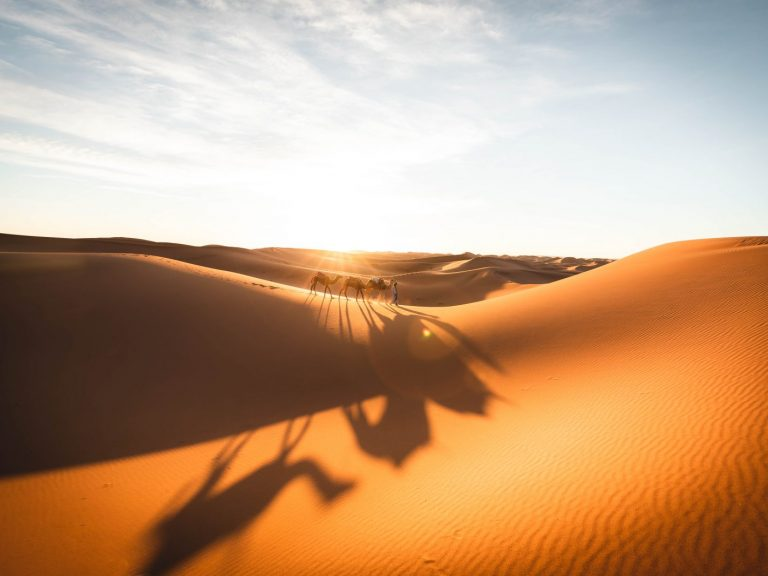 Walking with nomads dunes