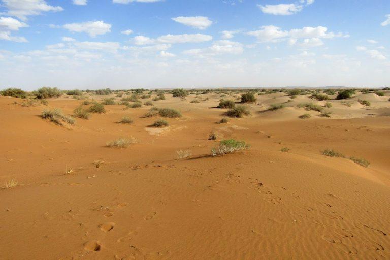Erg Smar - Best Ten Places in M'Hamid Desert