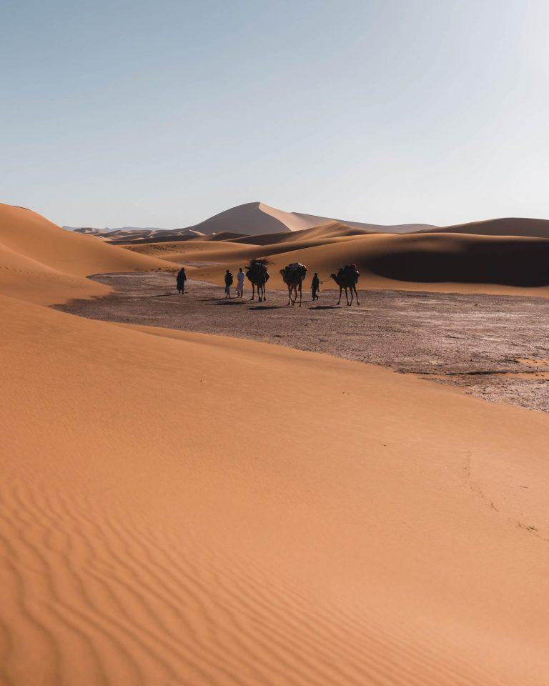 Erg Zahar - Best Ten Places in M'Hamid Desert