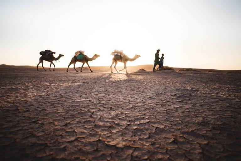 Iriqi Lake - Best Ten Places in M'Hamid Desert