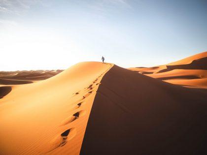 M'hamid Desert