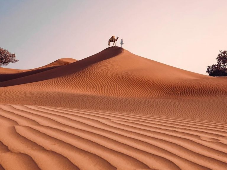 Best Image 3 | Walking with Nomads