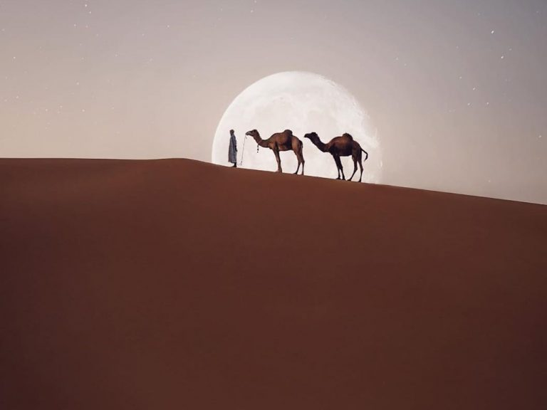 Best Image 4 | Walking with Nomads