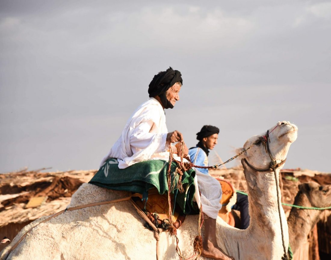 camel racing Walking with Nomads