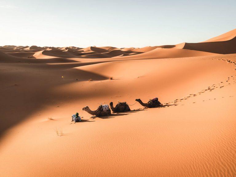 4x4 desert safari walking with nomads 1 day erg chegaga