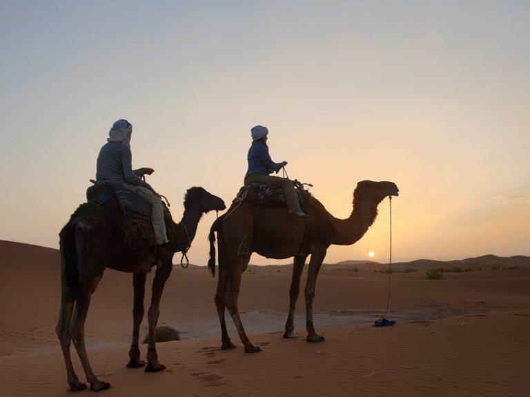 4x4 safari 1 day erg chegaga camel trek