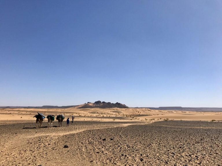 2 Day Desert Trek with Walking with Nomads Desert for Miles