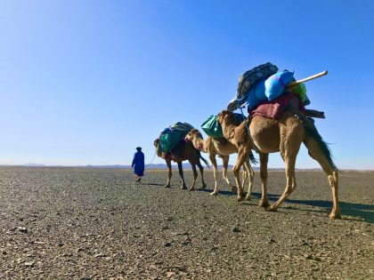 3 Day Desert Trek with Walking with Nomads - Setting Off