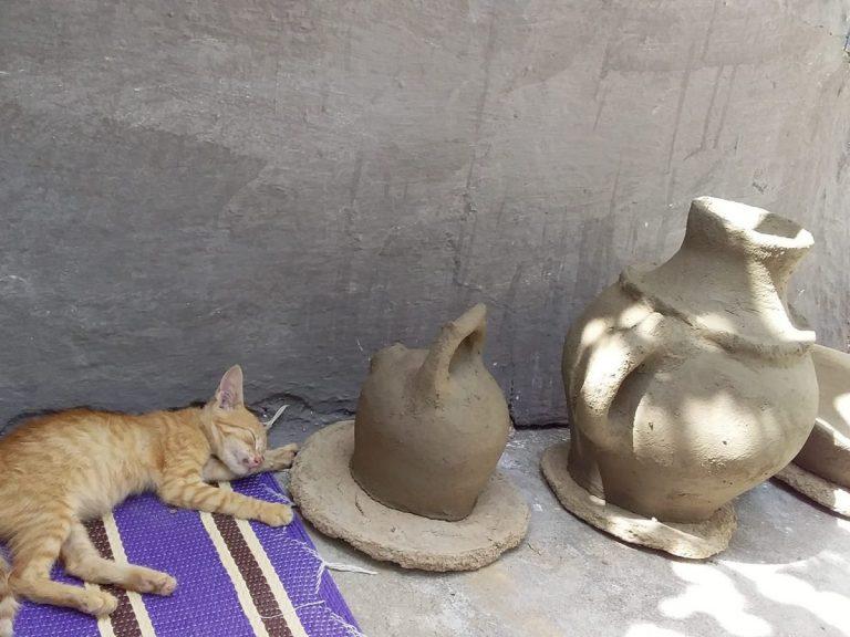 pottery and cat aicha son fb