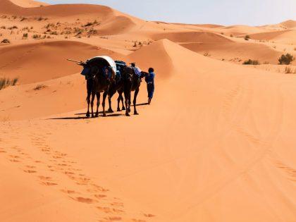 2 day desert trek